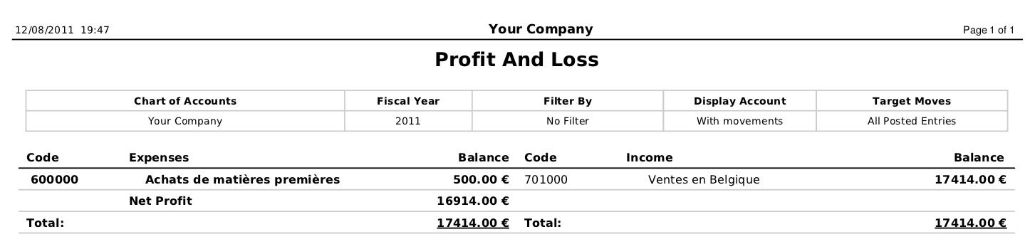 profit and loss and balance sheet example
